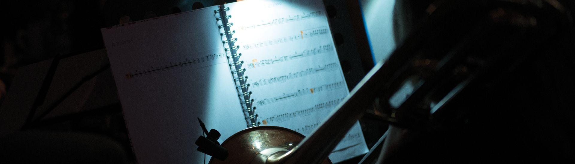 Weitere musikalische Aktivitäten